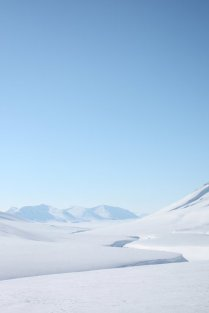 Svalbardtur 2011